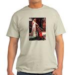 Accolade / Cocker Spaniel Light T-Shirt