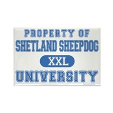 Sheltie University Rectangle Magnet (10 pack)