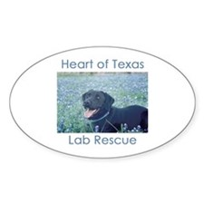 HOTLR Bluebonnets Oval Decal