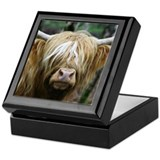 Cute Highland cow Keepsake Box