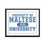 Maltese University Framed Panel Print
