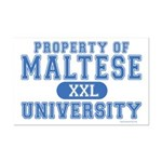Maltese University Mini Poster Print