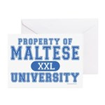 Maltese University Greeting Cards (Pk of 20)