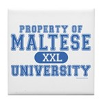 Maltese University Tile Coaster