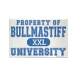 Bullmastiff University Rectangle Magnet (10 pack)