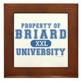 Briard University Framed Tile