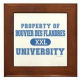 B.D.F. University Framed Tile