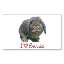 bunny lover Rectangle Decal