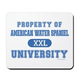 A.W.S. University Mousepad