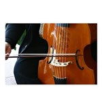 Viols in Our Schools Viol Postcards (Package of 8)