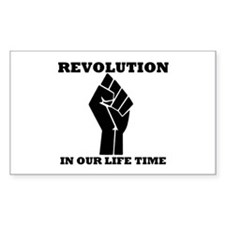 Revolution in Our Life Time Rectangle Decal