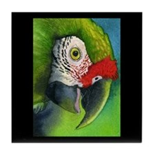 Green Military Macaw Tile Coaster