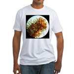 Culex sp. egg raft Fitted T-Shirt
