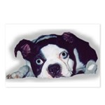 BOSTON TERRIER SWEET DOG Postcards (Package of 8)