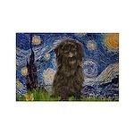 Starry Night / Affenpinscher Rectangle Magnet