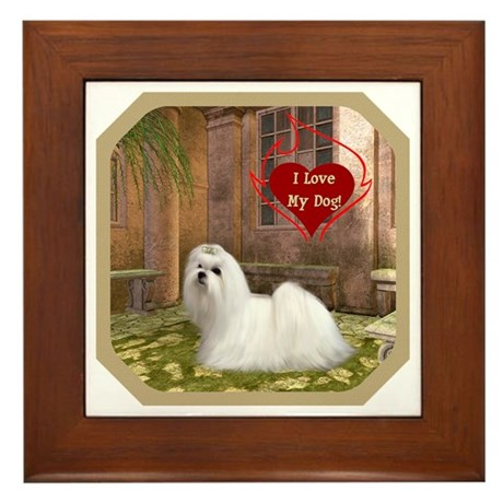 Maltese Framed Tile