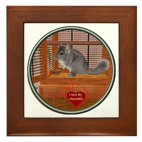Chinchilla #1 Framed Tile
