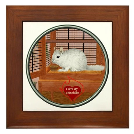 Chincilla #2 Framed Tile