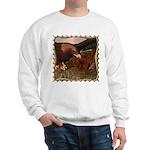 Flight of the Eagle Close Up Sweatshirt