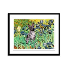 Irises-Am.Hairless T Framed Panel Print