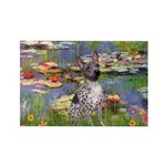 Lilies2-Am.Hairless T Rectangle Magnet