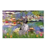 Lilies2-Am.Hairless T Postcards (Package of 8)