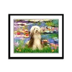 Lilies / Bearded Collie Framed Panel Print