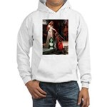 Accolade / Bearded Collie Hooded Sweatshirt