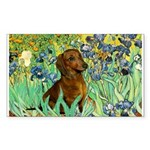 Irises & Dachshund Sticker (Rectangle)