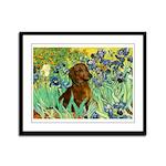Irises & Dachshund Framed Panel Print