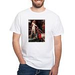 Accolade / Dobie White T-Shirt