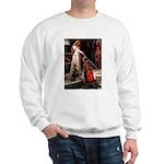 Accolade / Dobie Sweatshirt