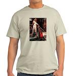 Accolade / Dobie Light T-Shirt