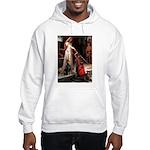 Accolade / Dobie Hooded Sweatshirt