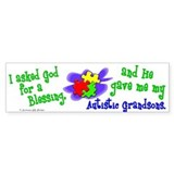 Blessing 2 (Autistic Grandsons) Bumper Bumper Sticker