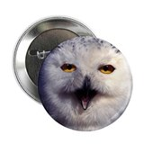 "Snow Owl 2.25"" Button (100 pack)"