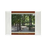Trinity Park Rectangle Magnet