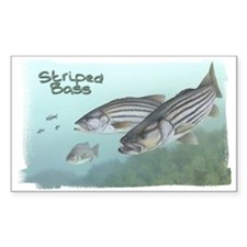 Striped Bass, Fish Rectangle Decal