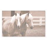 Haflinger Horse Rectangle Decal