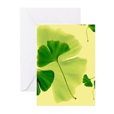 Ginkgo Biloba Leaves Greeting Cards (Pk of 10)