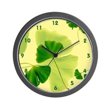 Ginkgo Biloba Leaves Wall Clock