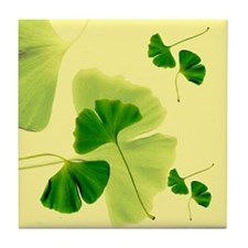 Ginkgo Biloba Leaves Tile Coaster