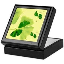 Ginkgo Biloba Leaves Keepsake Box