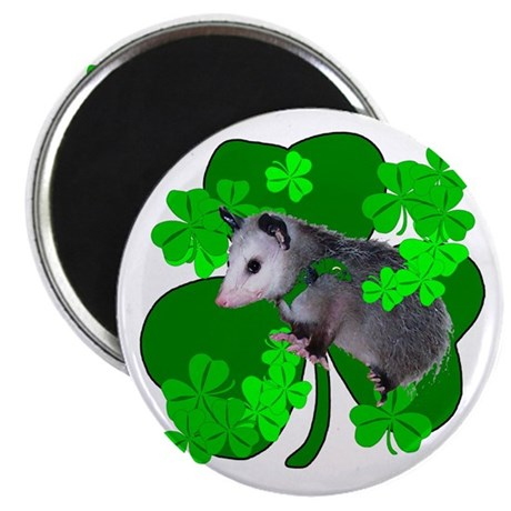 "Lucky Irish Possum 2.25"" Magnet (10 pack)"