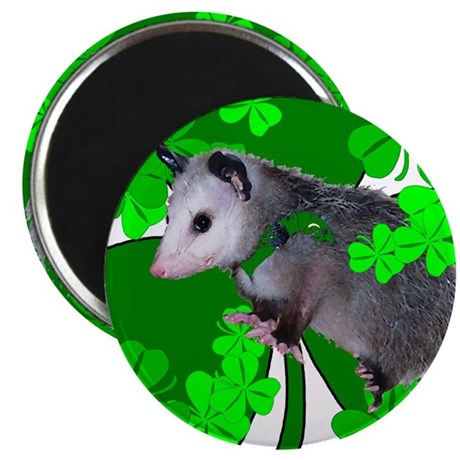 Lucky Irish Possum Magnet