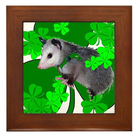 Lucky Irish Possum Framed Tile
