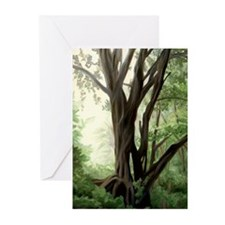 Light in the Forest Greeting Cards (Pk of 10)