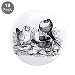 Pigeon Trio 3.5