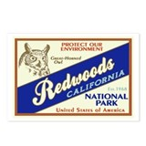 Redwoods Postcards