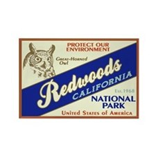 Redwoods (Owl) Rectangle Magnet